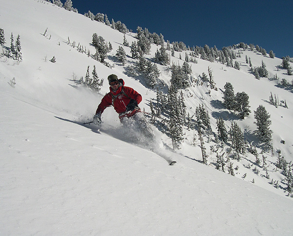 Flagstaff - Skiing Untracked Powder in Little Cottonwood Canyon