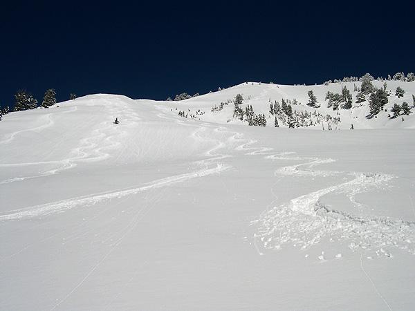 Ski Tracks in Little Cottonwood Canyon