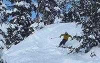 Slicing up some of Mammoth Mountain's stashes