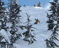 Some sepctate, others dictate - skiing powder at Mammoth