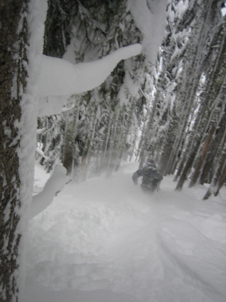 Stevens Pass Ski Resort Powder