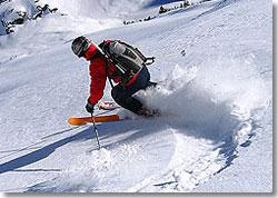 DaKine Pro II Ski & Snowboard Pack