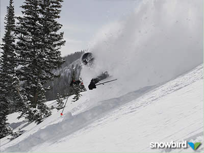 Snowbird Ski Resort: What's new for 2008