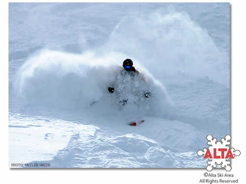 Powder Skiing at Alta Ski Area