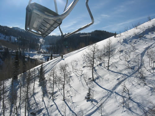 Deer Valley's New Lady Morgan Express - Awesome Tree Skiing