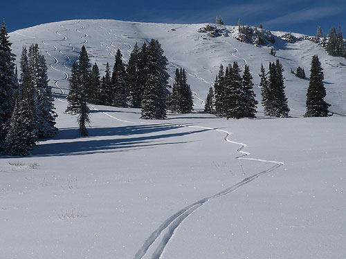 Wolf Creek Pass - skiing in the Uintas