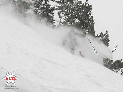 Alta Ski Area gets 14 inches on Jan 7!