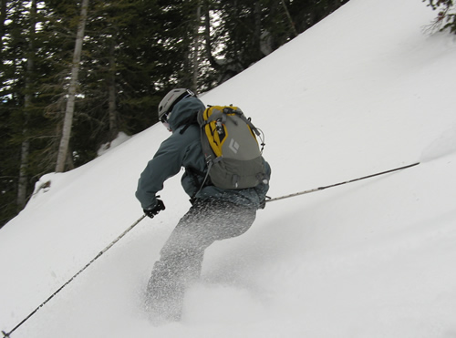 Black Diamond Covert Avalung Ski Pack
