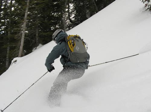 Black Diamond Covert Avalung Ski Pack