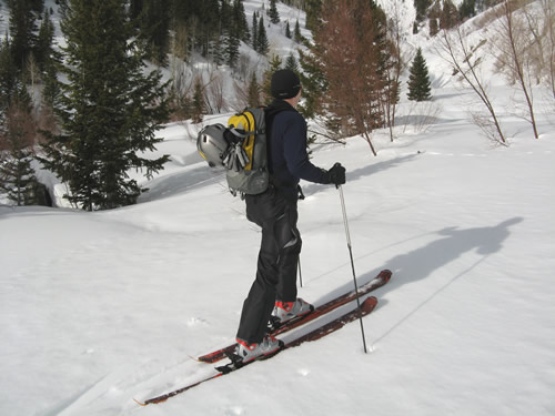 Jason Mitchell - Black Diamond Zealot Ski Review