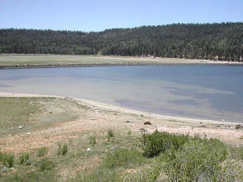 Navajo Lake Trail