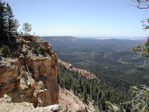 Virgin Rim Trail Near Navajo Lake