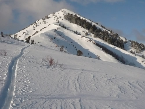 Mt Aire Backcountry Skiing