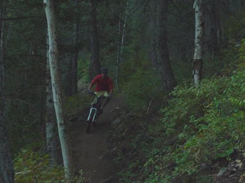 Ben Brutsch Riding Trail 150 Near Timpooneke Trailhead