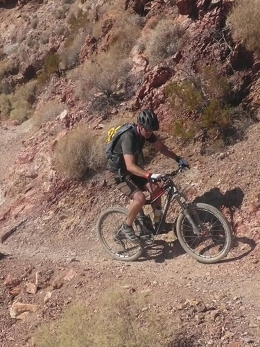 Rocky Mountain Altitude RSL 90 Bike Review