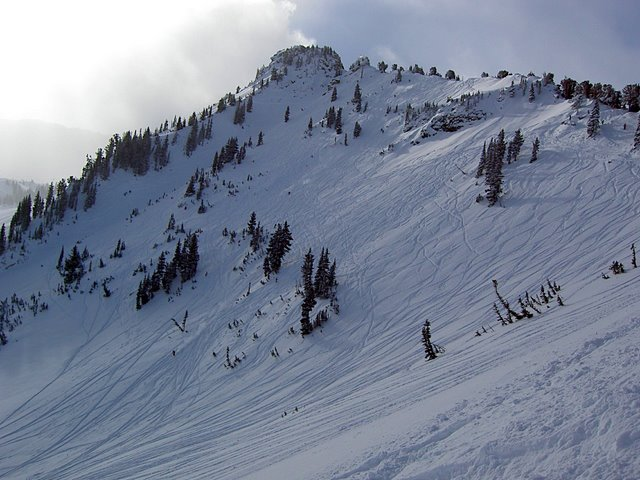 Gunsight and Greely Bowl at Alta Ski Resort