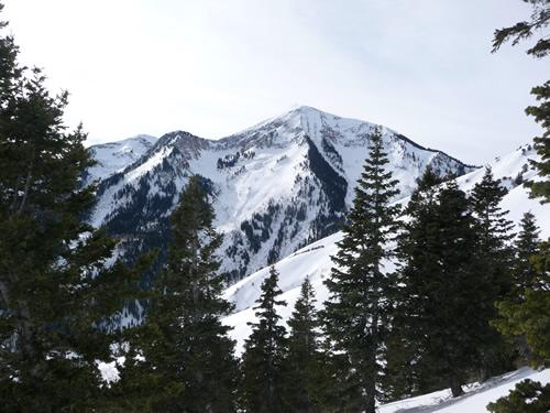 Box Elder Peak - Jan 17, 2009
