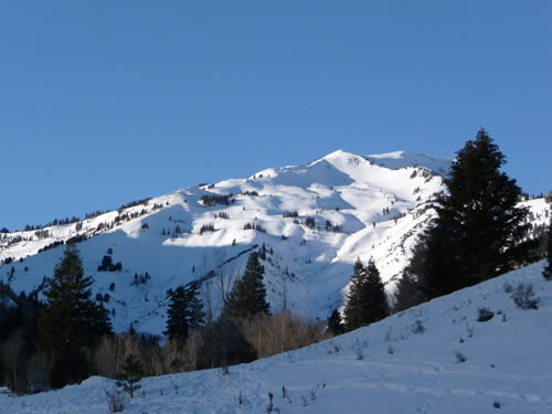 White Baldy in Winter