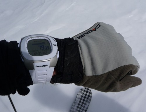 Freestyle Nomad Altimeter Watch Review