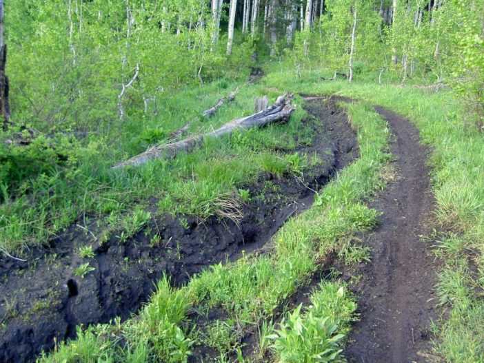 South Fork Deer Creek - American Fork Canyon Trail Damage