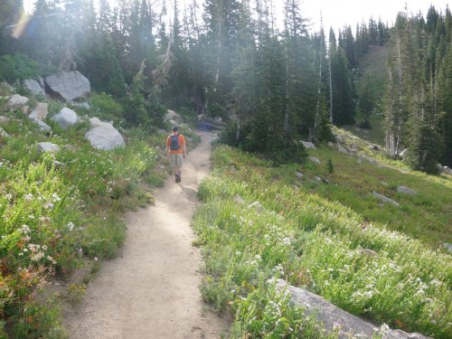 Sunset Peak Trail from Alta - Towards Catherine's Pass