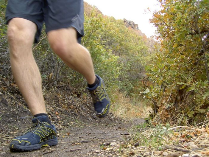 Inov-8 Roclite 312 GTX Shoe Review