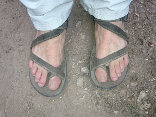 Chaco Rex Sandals Review