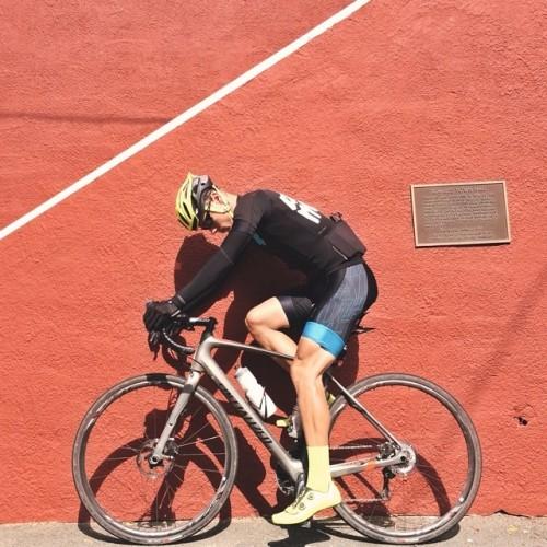 2015 Specialized Roubaix