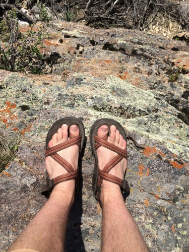 Chacos Z 2 Unaweep Sandals Review Feedthehabit Com