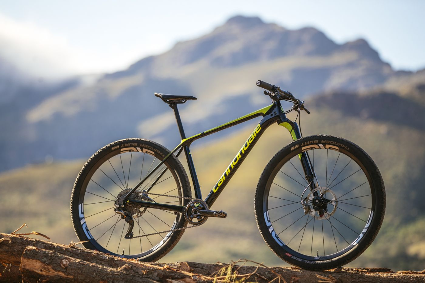 Fresh Wheels Cannondale S New F Si And Lefty Ocho