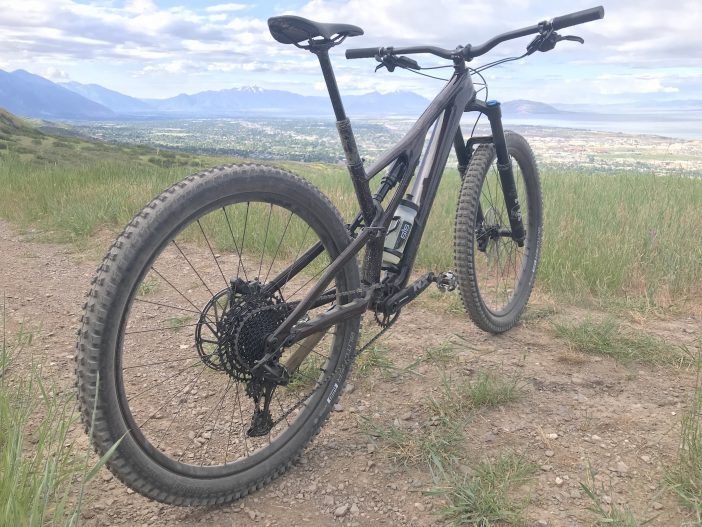 Specialized Stumpjumper EVO Comp Carbon 29 Review